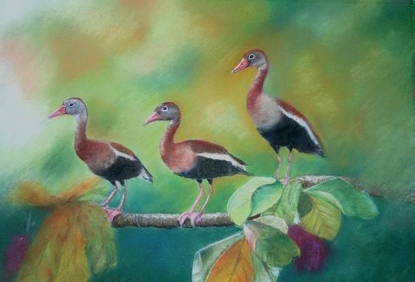 Wildlife Art Print featuring the painting Guichichi En Guarumo by Ceci Watson