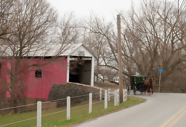 Bridge Art Print featuring the photograph Horse Buggy And Covered Bridge by David Arment
