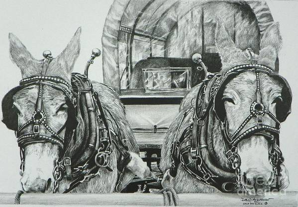 Texas Artist David Ackerson Art Print featuring the drawing Jude And Claude by David Ackerson