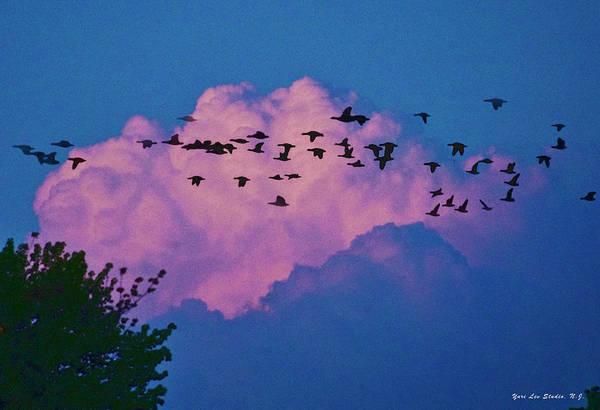 Cloud Art Print featuring the photograph Magenta Dream by Yuri Lev