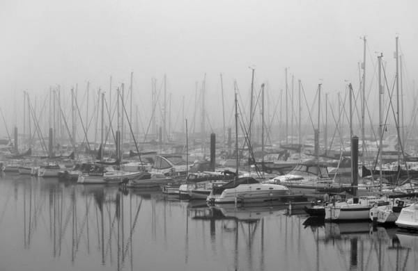 Black And White Art Print featuring the photograph Morning Fog by Terence Davis