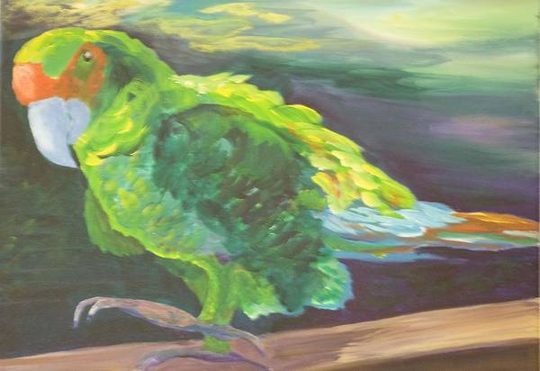 Birds Art Print featuring the painting Parrot Posing by Anita Wann