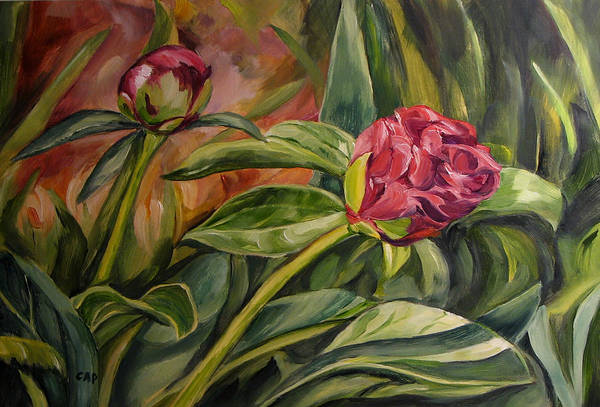 Garden Art Print featuring the painting Peony Buds by Cheryl Pass