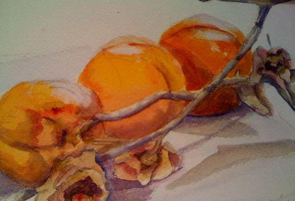 Still Life Art Print featuring the painting Persimmons by KC Winters