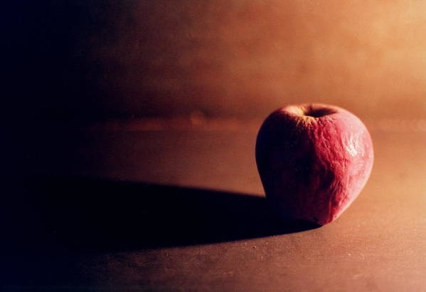 Apple Art Print featuring the photograph Pruned Apple Still Life by Michelle Calkins