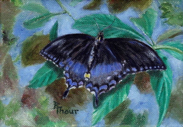 Butterfly Art Print featuring the painting Spread Your Wings by Brenda Thour