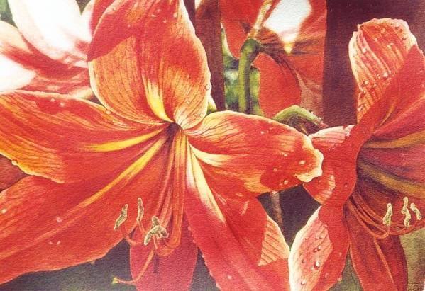 Flower Art Print featuring the painting Sweet Amaryllis by Marion Hylton