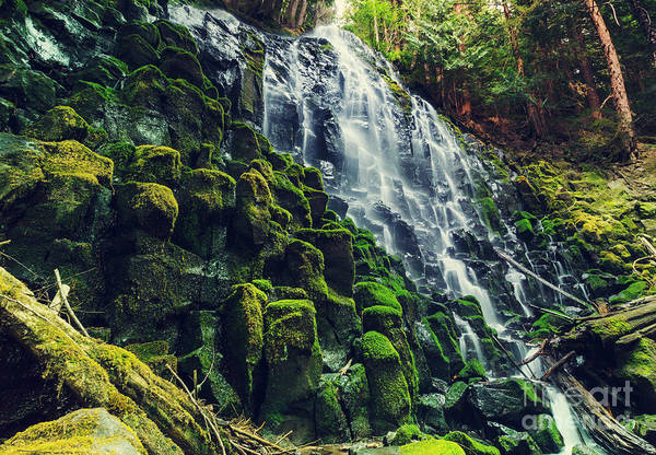Shower Art Print featuring the photograph Ramona Falls In Oregon,usa by Galyna Andrushko