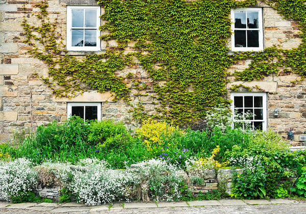 Accommodation Print featuring the photograph Cottage Garden by Tom Gowanlock