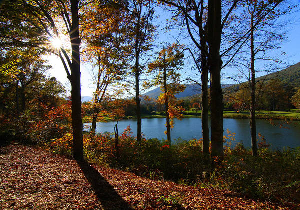 Autumn Art Print featuring the photograph Autumn Afternoon by Anne Barkley