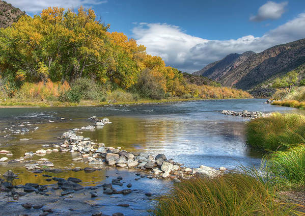 Rio Grande River Print featuring the photograph Autumn Stance by Britt Runyon