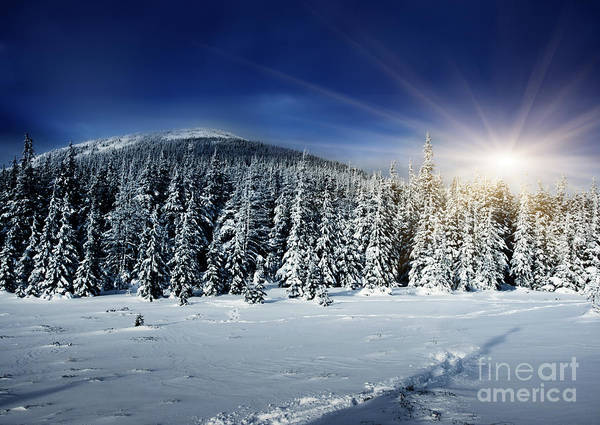 Beautiful Print featuring the photograph Beautiful Winter Landscape With Snow Covered Trees by Boon Mee