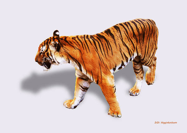 Tiger Art Print featuring the photograph Bengal Tiger by DiDi Higginbotham