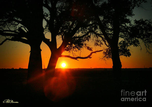 Cape Fear Art Print featuring the photograph Cape Fear Sunset by Phil Mancuso