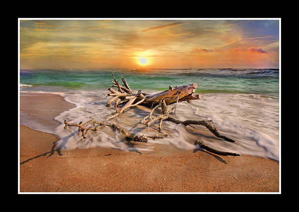Beach Art Print featuring the digital art Coastal Morning by Betsy Knapp