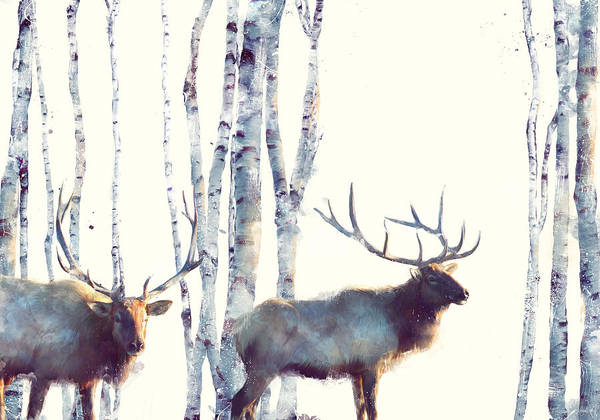 Elk Art Print featuring the painting Elk // Follow by Amy Hamilton