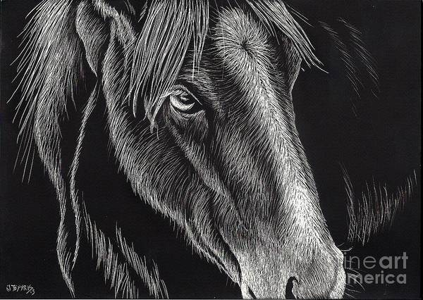 Horse Art Print featuring the painting Horse Up Close by Jennifer Jeffris