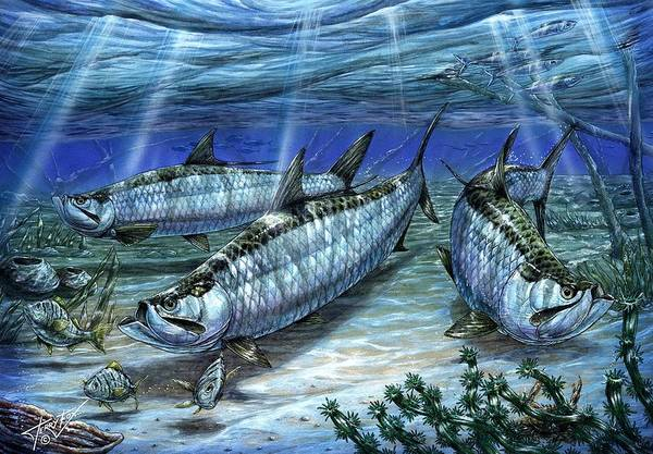 Tarpon Print featuring the painting Tarpon In Paradise - Sabalo by Terry Fox