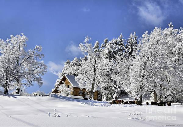 Winter Art Print featuring the photograph Vermont Winter Beauty by Deborah Benoit