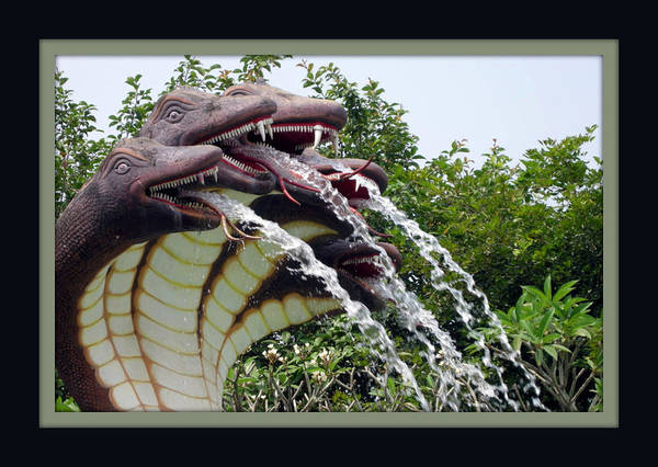 Animal Art Print featuring the photograph Water Fountain by Priya Abraham