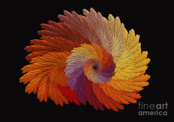 Autumn Colored Digital Art Art Print featuring the digital art Autumn's Colorwheel by Greg Jones