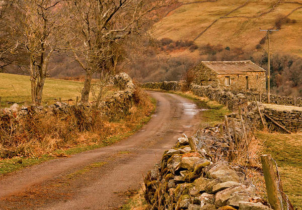 Country Art Print featuring the photograph Country Lane Yorkshire Dales by Trevor Kersley