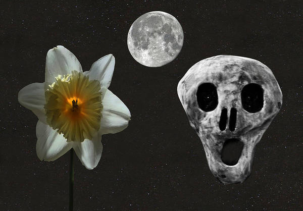 Death And The Daffodil Art Print featuring the digital art Death And The Daffodil by Eric Kempson