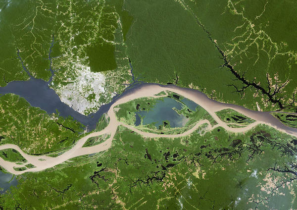 Negro Art Print featuring the photograph Manaus, Satellite Image by Planetobserver