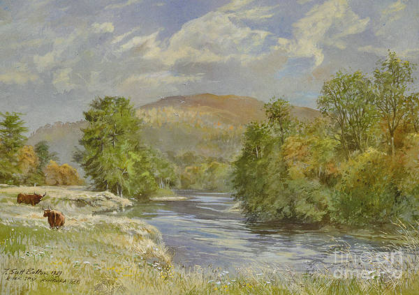 Landscape; River Scene; Highland Cattle; Meadow; Pastoral; Scottish; Hill; Hills; Tree; Trees; River Spey; Kinrara; Bull; Bulls; River; Water; Birds; Blue Sky; Sky Art Print featuring the painting River Spey - Kinrara by Tim Scott Bolton