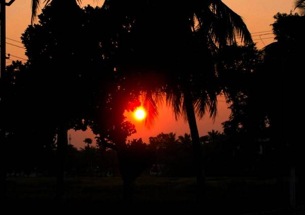 Sun Trees Coconut Trees Sky Yellow Red Black Houses Crop Art Print featuring the photograph Sunset 4 by Johnson Moya