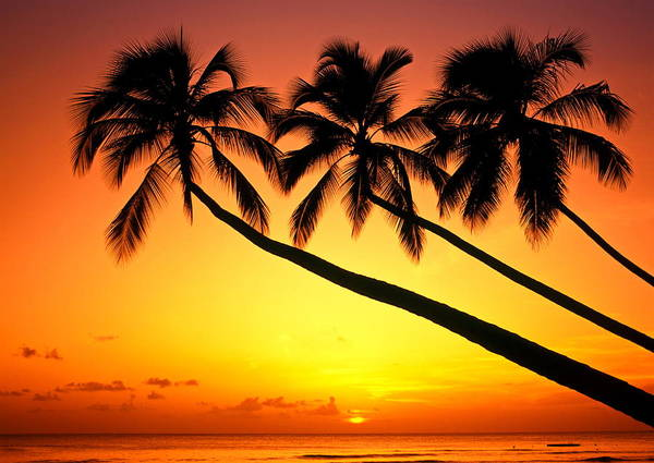 Horizontal Art Print featuring the photograph Sunset At Tropical Beach, Barbados by Hans-Peter Merten