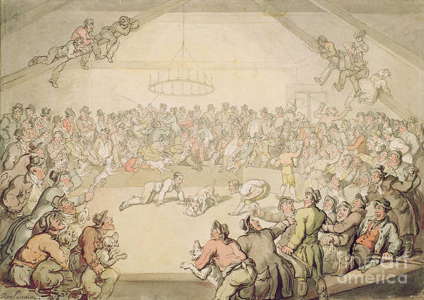 Arena; Gambling Art Print featuring the painting The Dog Fight by Thomas Rowlandson