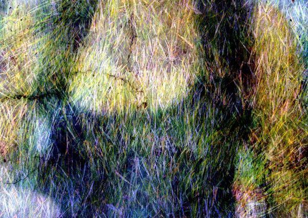 Woman Art Print featuring the digital art The Woman by Derick Burke
