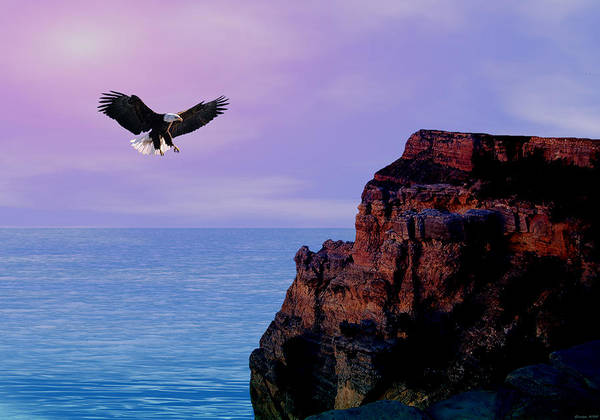 Eagle Art Print featuring the digital art I'm Free To Fly by Evelyn Patrick
