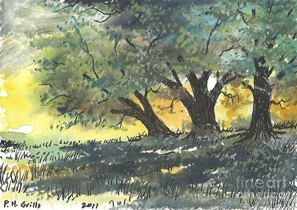 Trees Art Print featuring the painting Old Oaks by Patrick Grills