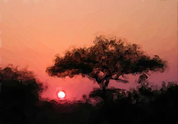 Digital Photography Art Print featuring the photograph African Sunset by David Lane