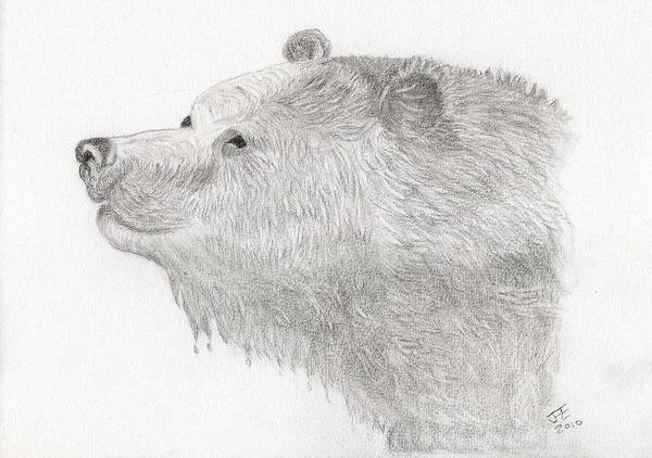 Black And White Sketch Art Print featuring the drawing Bear In Water by Jacqueline Essex