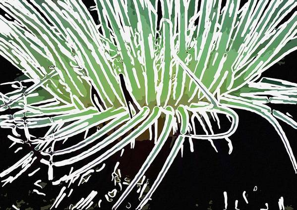 Starfish Art Print featuring the painting Beautiful Sea Anemone 3 by Lanjee Chee