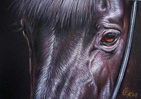 Horse Animal Portrait Equine Drawing Art Print featuring the drawing Black Stallion by Elena Kolotusha
