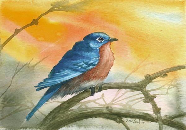 Bluebird Art Print featuring the painting Bluebird by Sean Seal