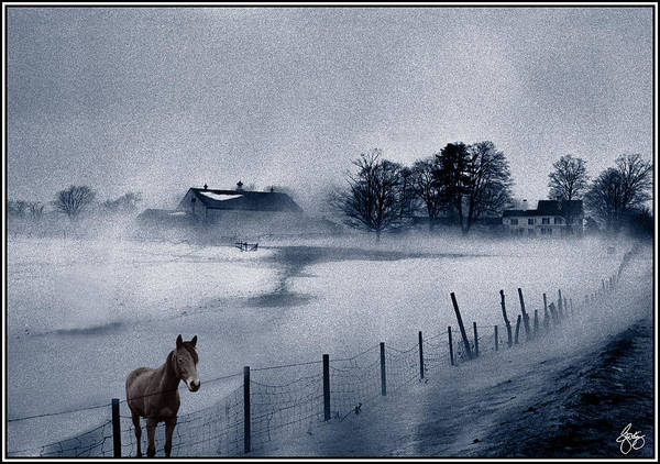 Mist Art Print featuring the photograph Brown Horse On A Blue Farm by Wayne King