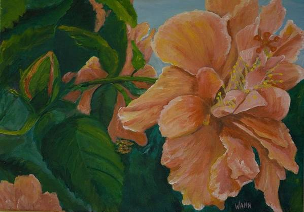 Flower Art Print featuring the painting Double Hibiscus by Anita Wann