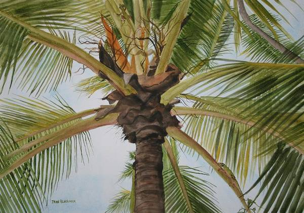 Palm Tree Art Print featuring the painting Gecko Heaven by Jean Blackmer
