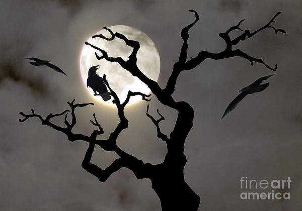 Moon Art Print featuring the photograph Halloween by Jim Wright