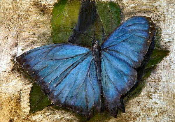 Butterfly Art Print featuring the painting Jewel Of The Garden by Merle Blair