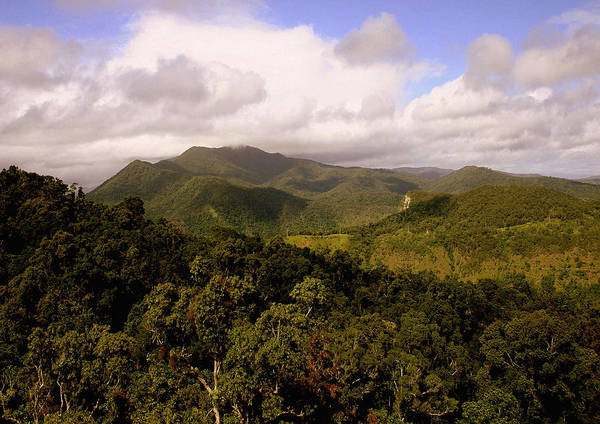 Hills Art Print featuring the photograph Kuranda Queensland by Tony Brown