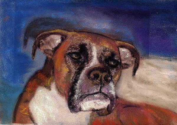 Pastel Pet Portraits Art Print featuring the painting Pet Portraits by Darla Joy Johnson