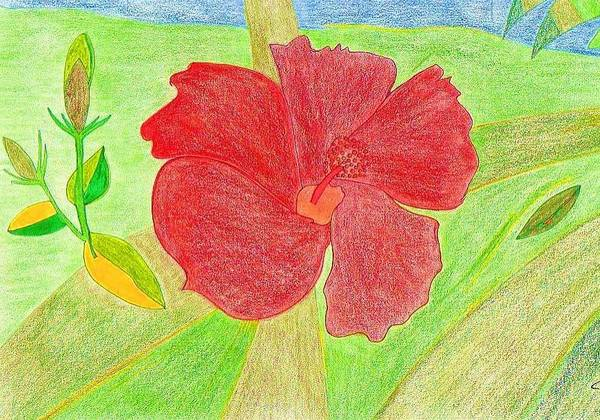 Red Flower Art Print featuring the drawing Red Passion by Michael Puya