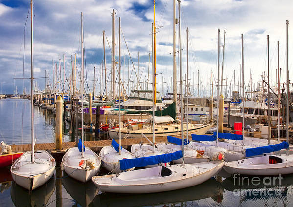 Anchored Print featuring the photograph Sailoats Docked In Marina by David Buffington