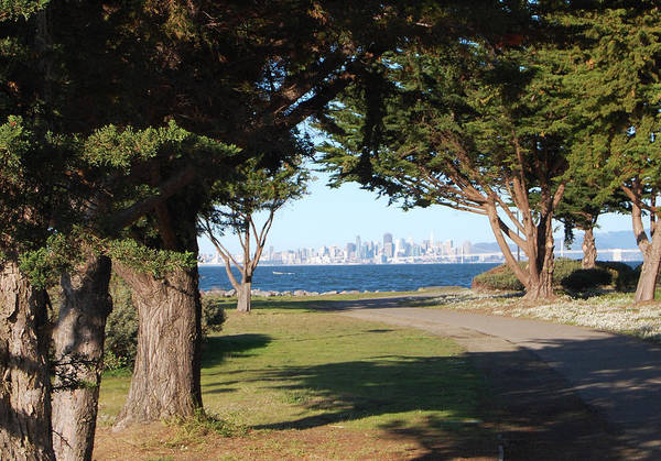 San Francisco Art Print featuring the photograph San Francisco Framed By Trees by Jean Booth